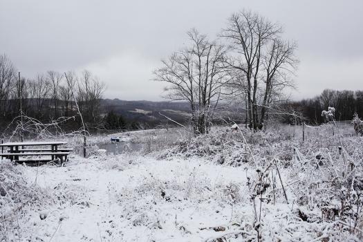 Snowscape 5