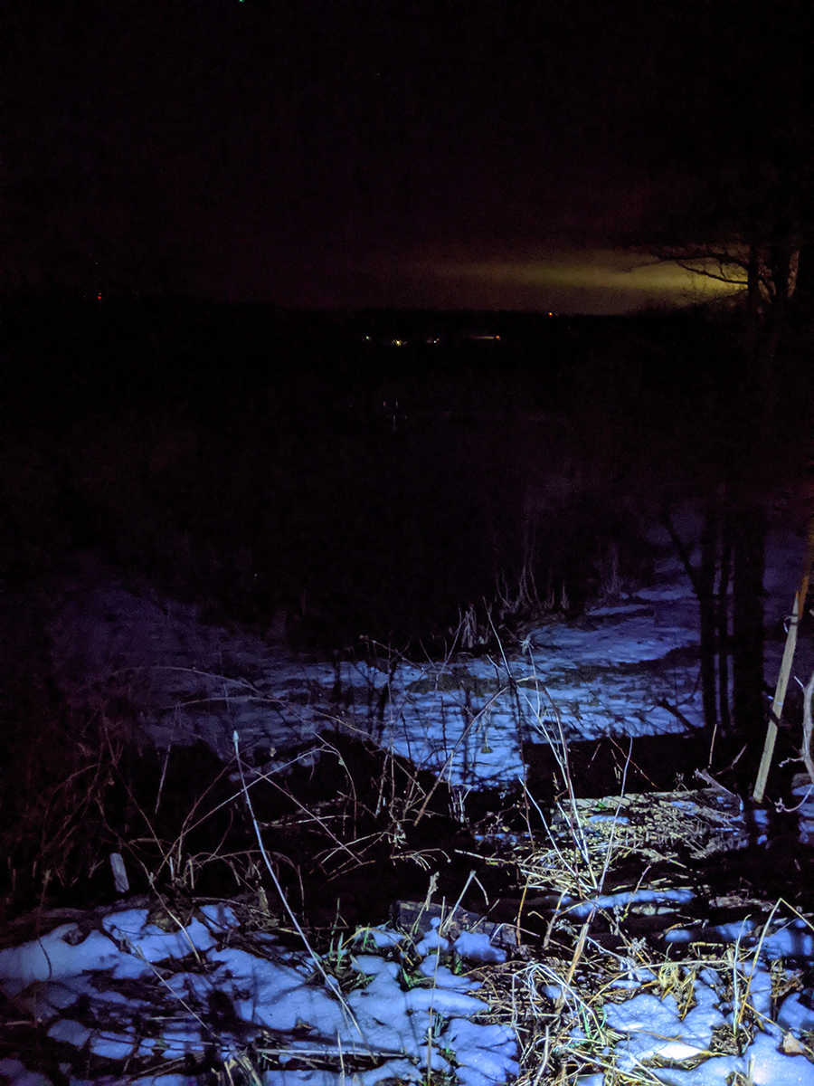 night picture with snow